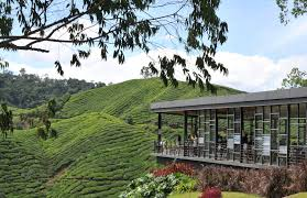 Cameron Highlands Hotel