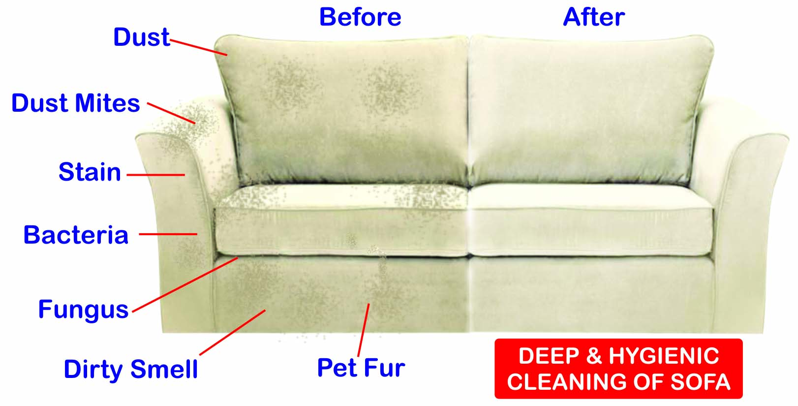 Sofa Cleaning Service Services Brooklyn