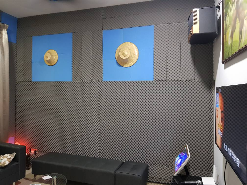 Acoustic Wall Panel and Wood Skirting