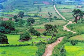 new south india tour packages 10 days,15 days and more