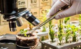 Perkhidmatan Penulisan Disertasi Bioteknologi