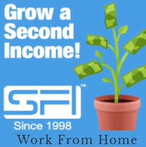 Home business Network marketing MLM Work from Home