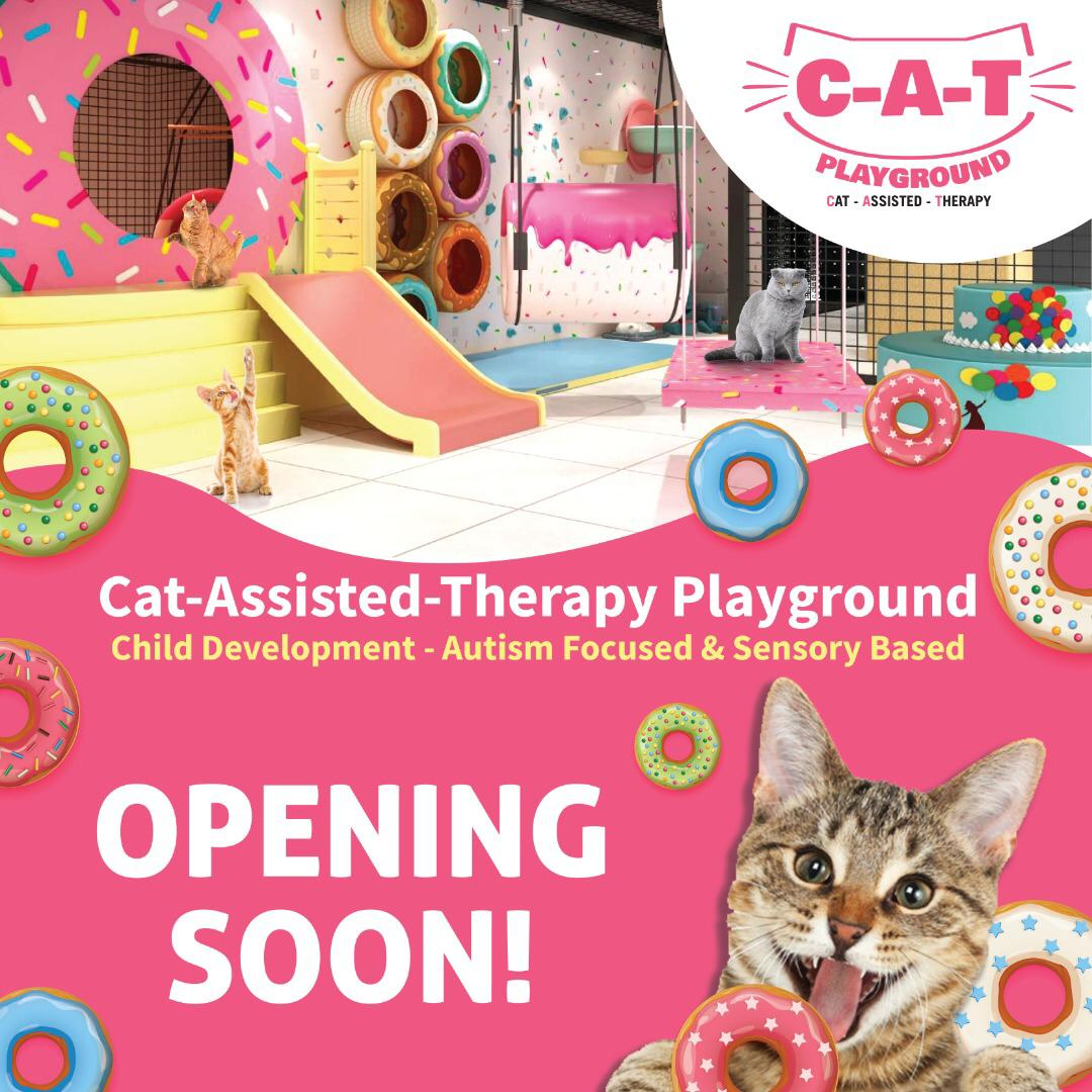 The FIRST Cat-Assisted-Therapy Playground in Malaysia! (C-A-T Playground @ Sunway Putra Mall)