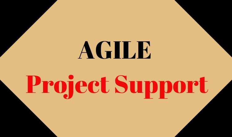 AGILE Project Support