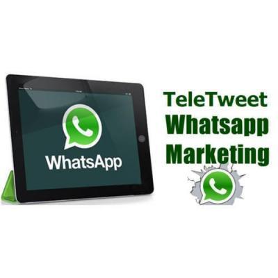 Promotional whatsapp