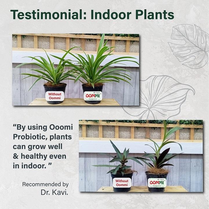 OOMMI PROBIOTICS PLANTS & FLOWERS – 1L