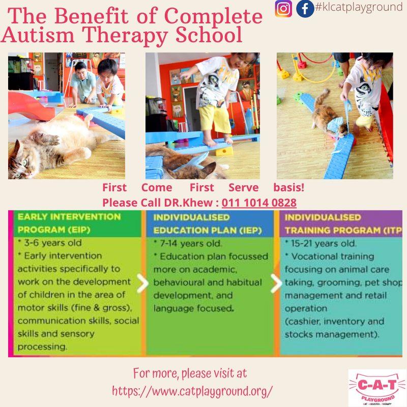 Complete Autism Therapy School ( C-A-T SCHOOL)