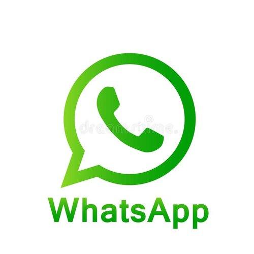 Bulk whatsapp services
