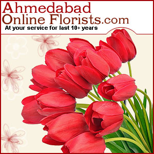 Get Online Delivery of Birthday Flowers, Cakes & Gifts Delivery to Ahmedabad