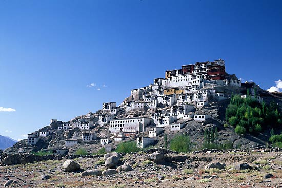 Ladakh with Friends Tour Package